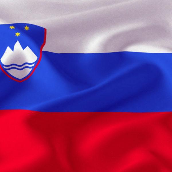slovenackazastava