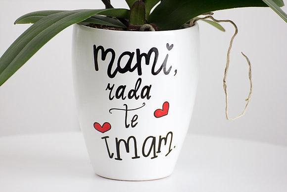 mami-rtm